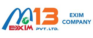 M13-Logo